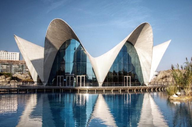 Los cascarones del arquitecto f lix candela outeri o for Arquitectos y sus obras