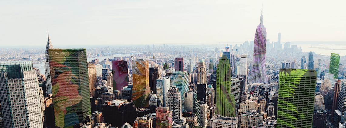 nueva york agenda cultural