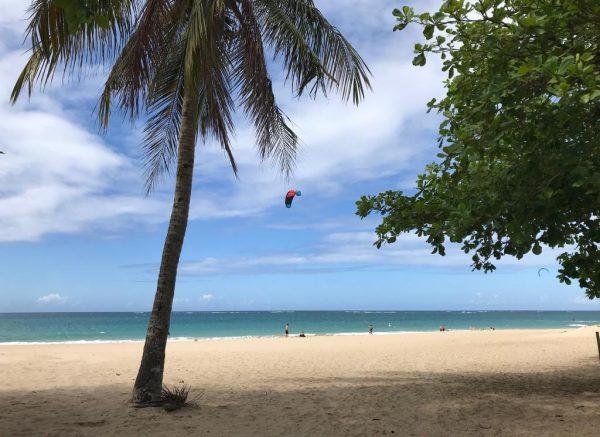 Saborea Puerto Rico