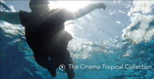 cinema tropical collection